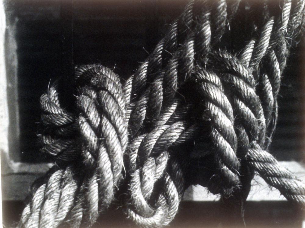 Untitled 1977 Photograph